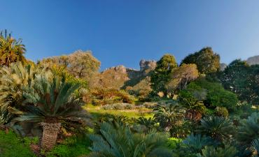 Jardin à Cape Town en voyage en Afrique du Sud